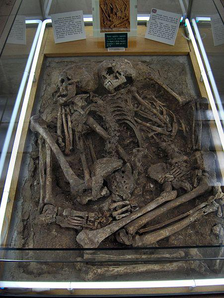 Here are skeletons of men of Grimaldi in the museum of Monaco. We can see that the inferior jaw is forwarded, characteristic found only on Black people. This is called 'prognathism'.