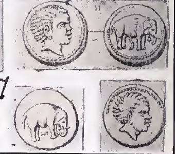 Carthaginian coins in Hannibal's time. It should be probably the famous General on these coins. Source: African Presence in Early Europe, Ivan van Sertima, page 138; Sex and Race vol. 1, J.A Rogers, page 81