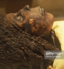 The Egyptian DNA case : truth and lies