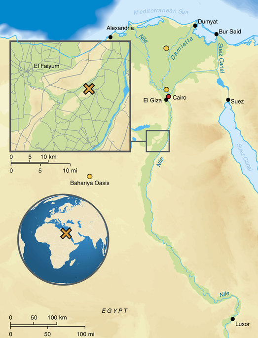 Voici en encadré au nord de l'Egypte d'ou viennent les momies de l'étude de Johannes Krause Regardez loin tout en bas à droite, c'est Louxor, là ou sont enterrés les pharaons.